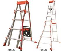 SELECT STEP® ALUMINUM LADDER